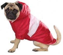 Одежда для собак | MyDog.su - сайт о собаках