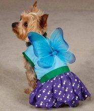 Праздничные наряды для собак