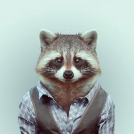 животные в одежде - Самое интересное в блогах
